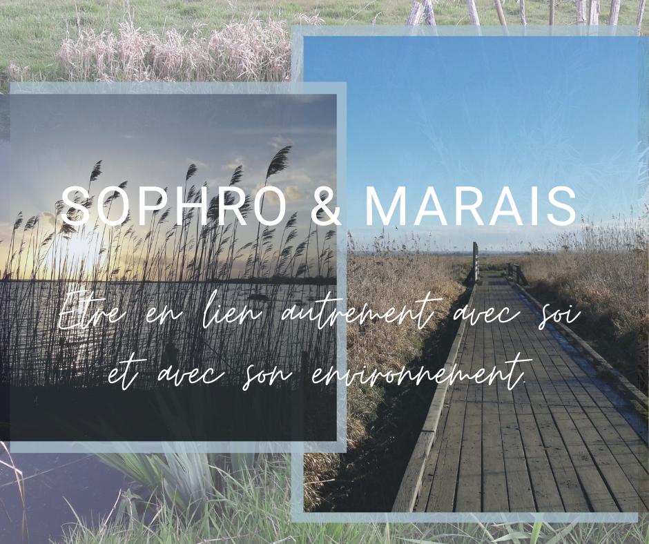 Sophrologie et nature. Sophro-balade dans les marais Lavau-sur-Loire, Savenay. Se ressourcer. Se reconnecter à soi et à son environnement autrement. Karine Agnez - Sophrologie Coaching